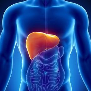 chronic-hepatitis-b